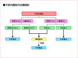 子宮内膜症の治療.jpg