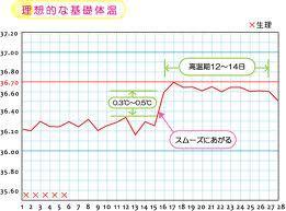 理想的な基礎体温.jpg