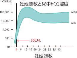 尿中HCG.jpg