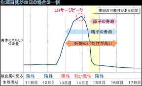 排卵日検査薬陽性.jpg